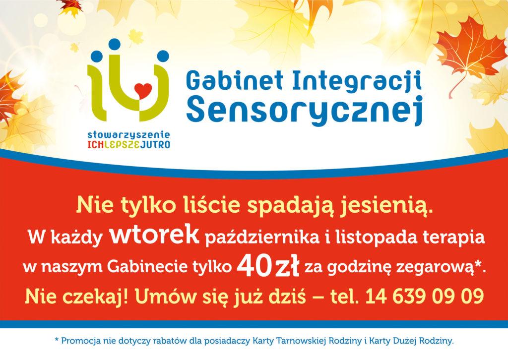 ilj-promocja-grafika-na-www-a