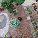 Czerwiec w naszych ogrodach